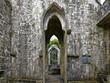 Irland - Muckross Abbey