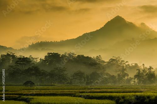 Deurstickers Honing A misty mountainous landscape.