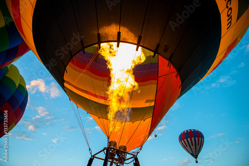 Tuinposter Ballon Albuquerque Hot Air Balloon Festival