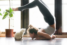 Young Attractive Smiling Woman Practicing Yoga, Stretching In Scorpion Exercise, Variation Of Vrischikasana Pose, Working Out, Wearing Sportswear, Grey Pants, Bra, Indoor Full Length, Home Interior