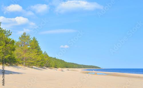 Fotografie, Obraz  Beach on Ladoga lake at morning.