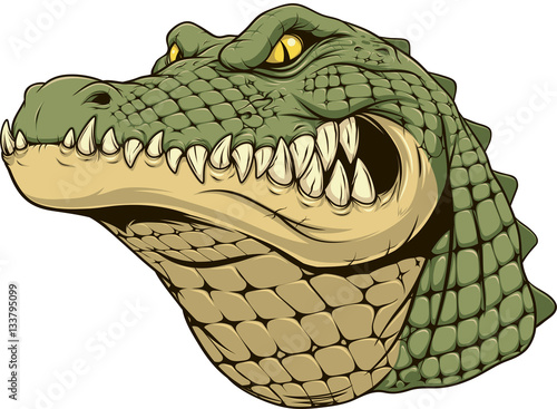 Photo Ferocious alligator head