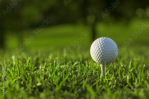 Plakat Golf
