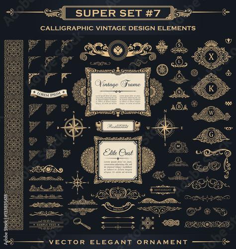 Obraz na plátne Calligraphic vintage elements. Vector baroque set. Design icons