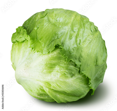 iceberg lettuce cabbage isolated on white