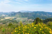 Beautiful Landscapes In Phu Pa...