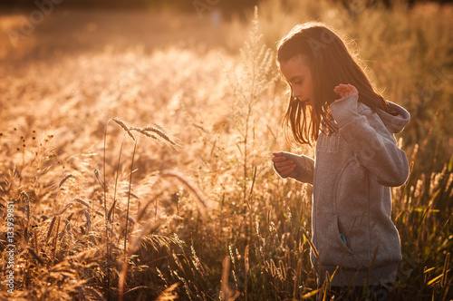 Papiers peints Culture A young girl in a field of wheat.