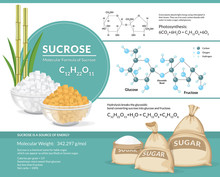 Vector Illustration. White And Brown Sugar Cubes In Bowls. Structural Chemical Formula And Model Of Sucrose