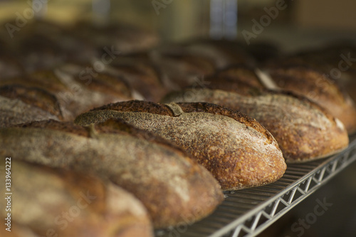 Artisanal bread loafs in cooling rack at bakery