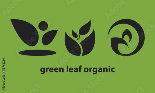 Fototapeta green leaf organic logo obraz na płótnie
