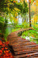 Fototapeta Wooden tourist path in Plitvice lakes national park