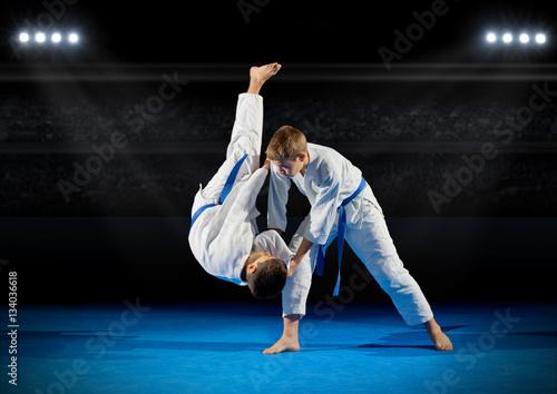 Garden Poster Martial arts Children martial arts fighters