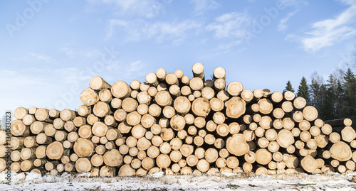 Spruce log in stock Tableau sur Toile