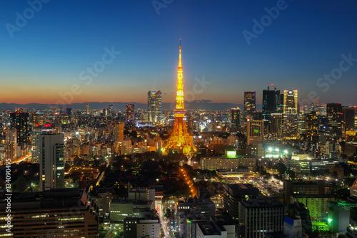 Plakat Widok miasta Tokio widoczne na horyzoncie