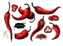 Chili Pepper Hand Drawn Vector...