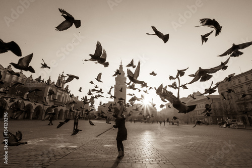 Fototapeta Doves in flight over old city main square in Krakow, Poland obraz