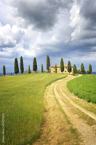 In de dag Toscane Tuscan Farmhouse with pine trees on a hill. Dark clouds in the sky. A winding field path leading up to the house.