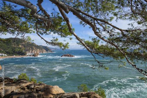 Staande foto Kust Mediterranean rocky coast. Tossa del Mar, Costa Brava, Catalonia, Spain