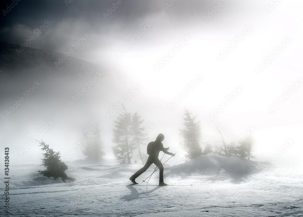 Fototapety, obrazy: Woman on ski