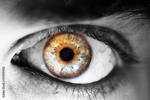 Spoed Foto op Canvas Iris beautiful human eye, macro, close up blue, yellow, brown, green