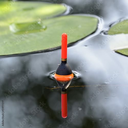 Fotografie, Obraz  Fishing float in the pond among lily leaves