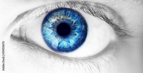 Poster Iris beautiful human eye, macro, close up blue, yellow, brown, green