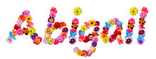 Flower Name Abigail