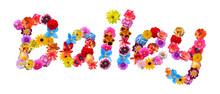 Flower Name Bailey