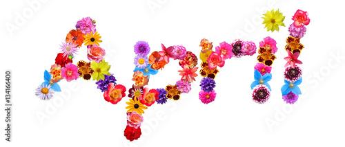 Photo  Flower Name April
