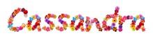 Flower Name Cassandra