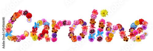 Flower Name Caroline Canvas Print