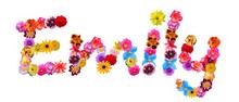 Flower Name Emily