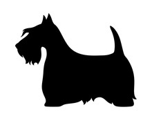 Vector Black Silhouette Of A S...