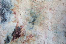 The Texture Of The Skin Of The Animal Turned Inside Out.  Leather Tanning Large-scale Animal