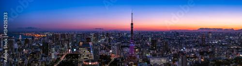 Poster Tokyo 東京タワーと東京都心の夕景・大パノラマ
