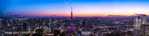 In de dag Tokio 東京タワーと東京都心の夕景・夜景