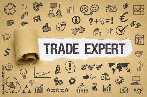 Fotografie, Obraz  Trade Expert