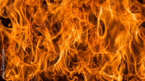 Fotografiet  Blaze fire flame background and textured