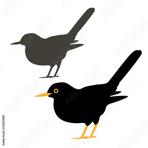 blackbird vector illustration style Flat set silhouette Wallpaper Mural