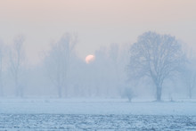 Foggy Landscape With Snow At Sunset