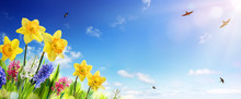 Spring And Easter Banner - Daf...