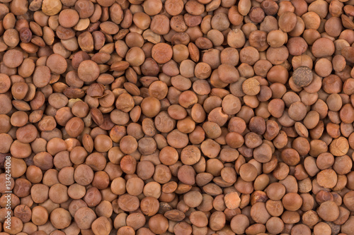 Aluminium Prints Picture of brown lentils over flat surface