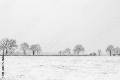 Papiers peints Blanc Bourgogne en hiver