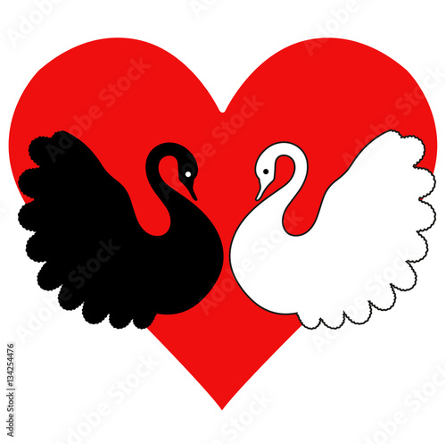 Vector Illustration Of Black And White Swans Silhouette In Love With
