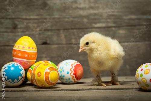 Easter eggs and chicken Fototapeta