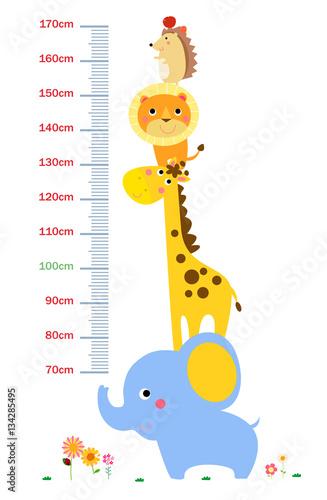 Poster de jardin Zoo The child's height illustrations