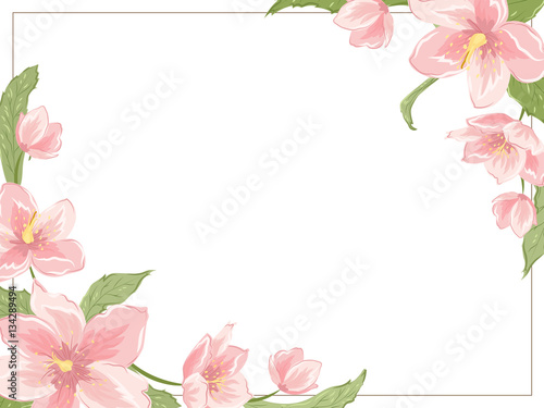 Corner Frame Template With Sakura Magnolia Hellebore Flowers On