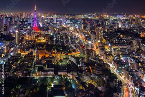 Tokyo city view visible on the horizon