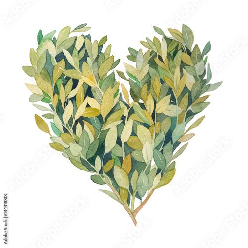 serce-z-zielonych-lisci-na-galazkach-na-bialym-tle