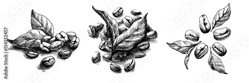 Obraz coffee grains and leaves in graphic style - fototapety do salonu